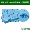 送料無料・撥水加工 クール包装紙(干物用用) 890×580mm「300枚」 ※代引き不可