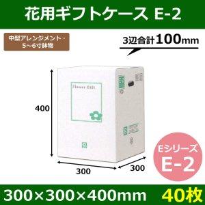 画像1: 送料無料・花用ギフトケースE-2  エコノミータイプ  300×300×400mm/500  「40枚」