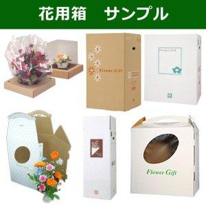 画像1: 花用箱サンプル「3種×各1枚まで」 ※企業様限定サービス※
