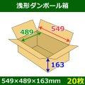 送料無料・浅形ダンボール箱 549×489×163mm (140サイズ対応) 「30枚1セット」