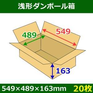 画像1: 送料無料・浅形ダンボール箱 549×489×163mm (140サイズ対応) 「20枚1セット」