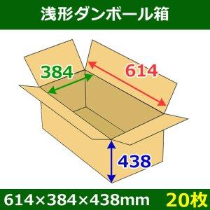 画像1: 送料無料・浅形ダンボール箱 614×384×438mm (160サイズ対応) 「20枚1セット」