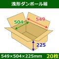 送料無料・浅形ダンボール箱 549×504×225mm (140サイズ対応) 「30枚1セット」