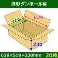送料無料・浅形ダンボール箱 639×519×230mm (160サイズ対応) 「30枚1セット」
