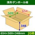 送料無料・浅形ダンボール箱 654×509×348mm (160サイズ対応) 「30枚1セット」