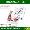 送料無料・りんご用ギフトボックス  自慢のりんご小   268×268×96mm「40個」