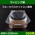 送料無料・ラッピング袋 フルーツバスケットミニ用 400×250mm「500枚」
