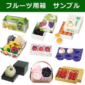 画像1: フルーツ青果用箱・資材サンプル ※企業様限定サービス※