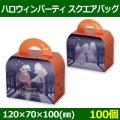 送料無料・お菓子用資材 ハロウィンパーティ スクエアバッグ 120×70×100(mm) 「100個」