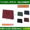 送料無料・手提袋 T-Y カラークラフト 幅430×マチ110×丈320mm 「100枚」全5色