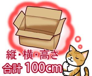 画像1: セミオーダーダンボール箱 3辺合計100cmまで「20枚」