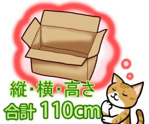 画像1: セミオーダーダンボール箱 3辺合計110cmまで「20枚」