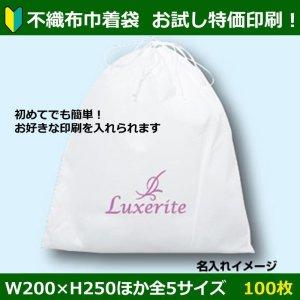 画像1: 送料無料・印刷お試し特価!不織布巾着袋「100枚」W200×H250ほか全5サイズ