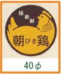 送料無料・販促シール「朝びき鶏」40x40mm「1冊500枚」