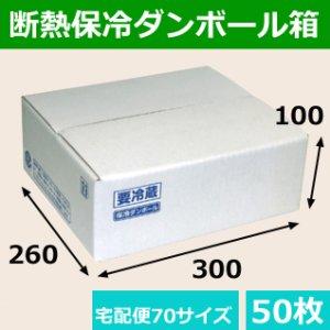画像1: 送料無料・保冷ダンボール宅配箱「片面エコクール70サイズ 260×300×100mm 「50枚」