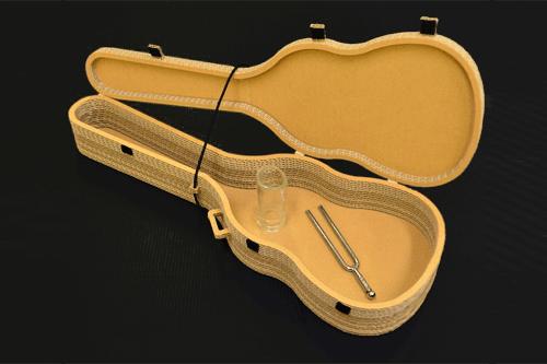 ディスプレイ(ギターケース)