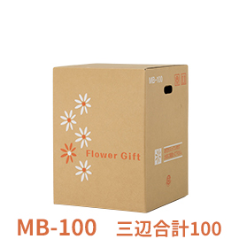 MB-100